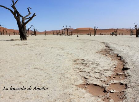 What future for Namibia? Reflection on tourism in a natural and cultural delicate environment