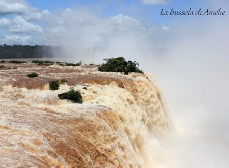Iguazu Falls – Reflection on the relationship between man and nature